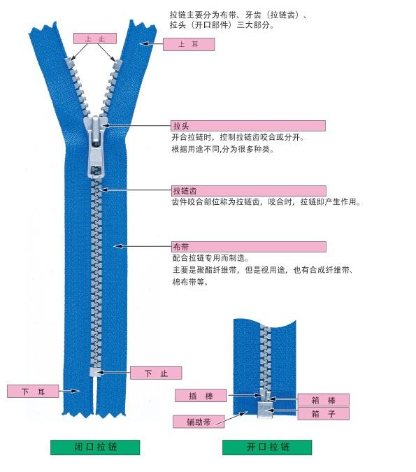 拉链的构造